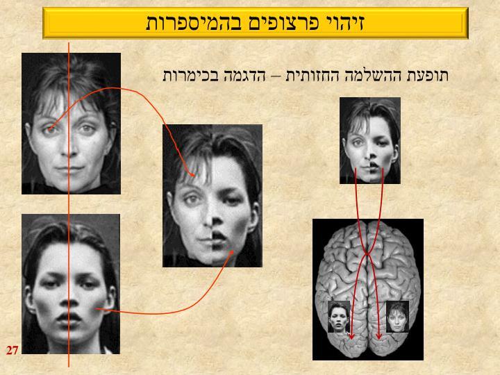 זיהוי פרצופים בהמיספרות