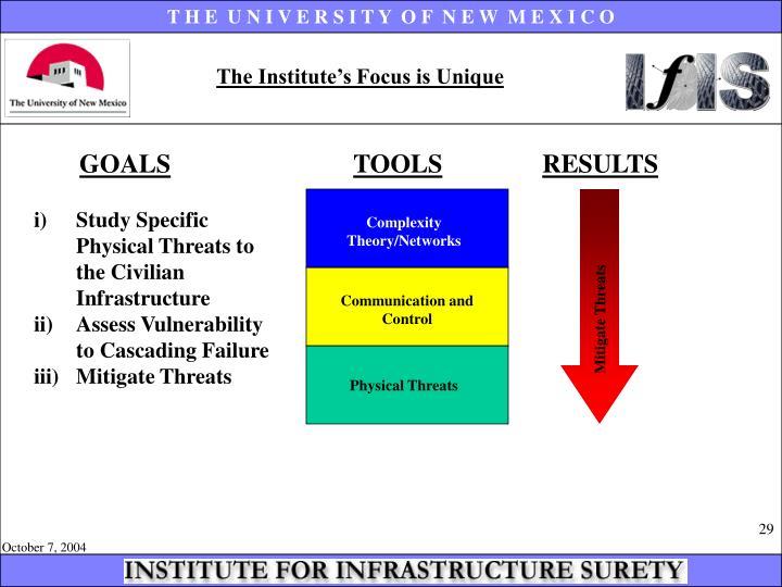 The Institute's Focus is Unique