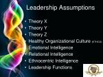 leadership assumptions
