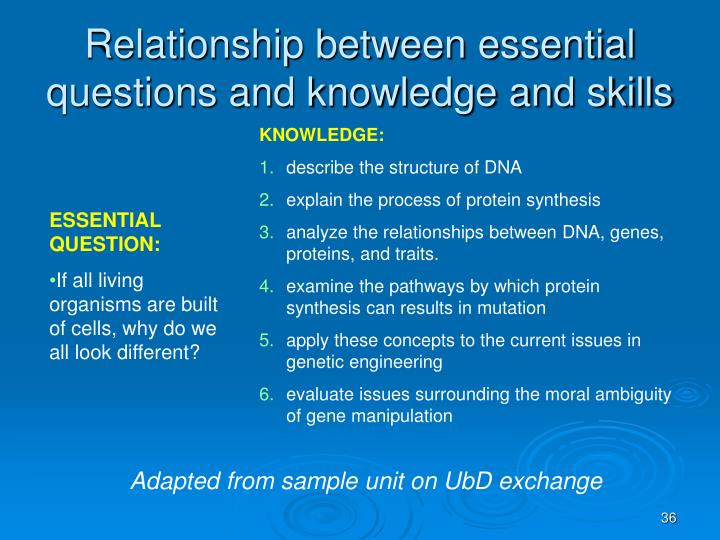 Relationship between essential questions and knowledge and skills