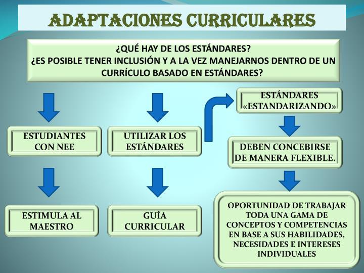 adaptaciones curriculares n.