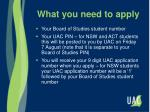 what you need to apply