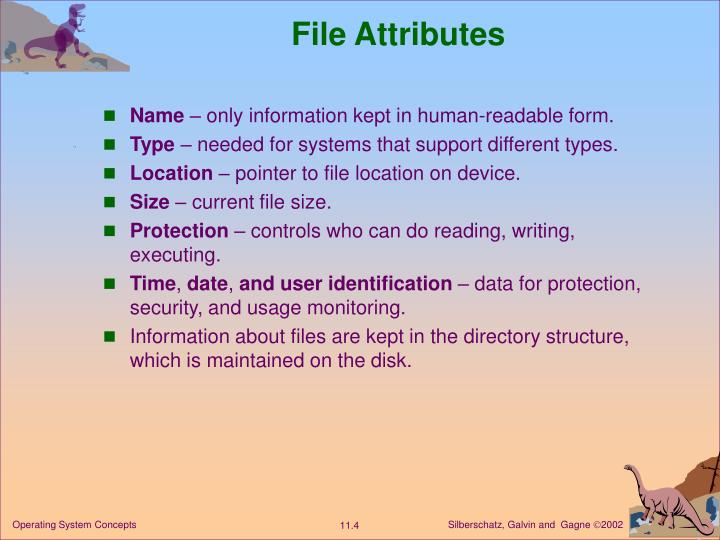 File Attributes