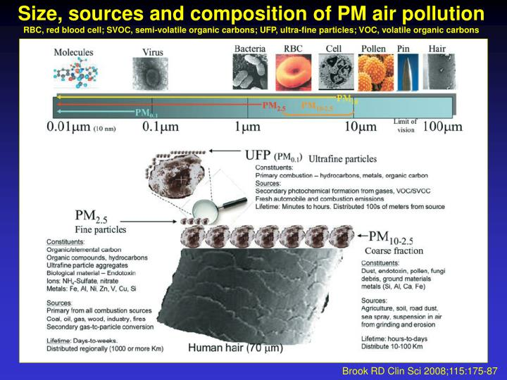 Size, sources and composition of PM air pollution