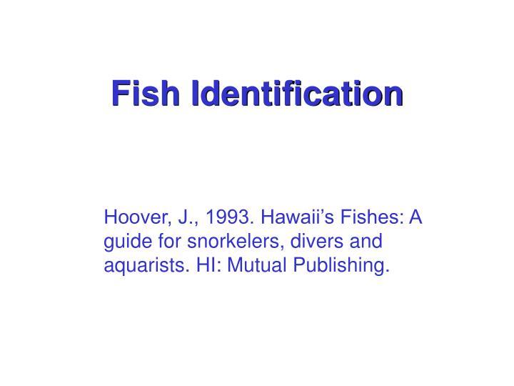 fish identification n.