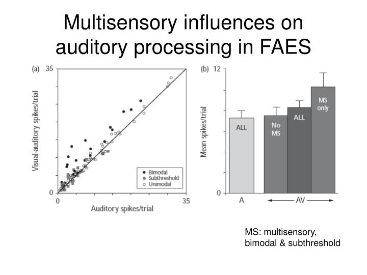 Multisensory influences on