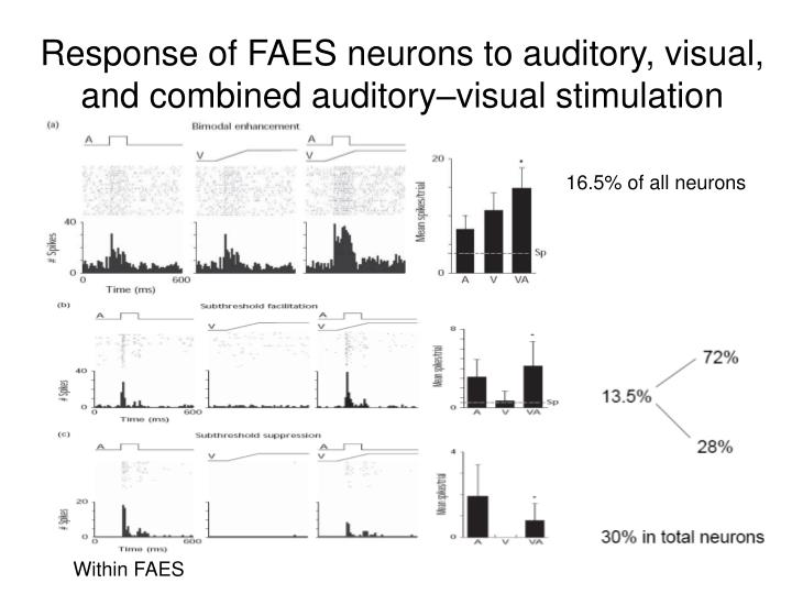 Response of FAES neurons to auditory, visual, and combined auditory–visual stimulation