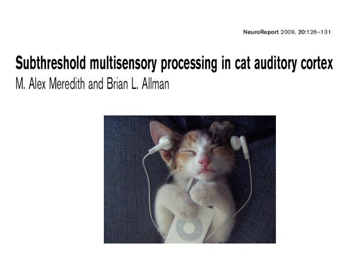 Multisensory convergence