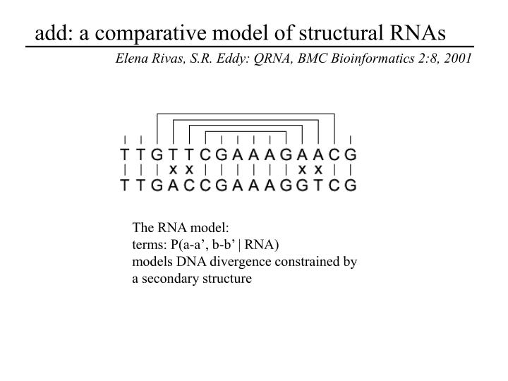 add: a comparative model of structural RNAs