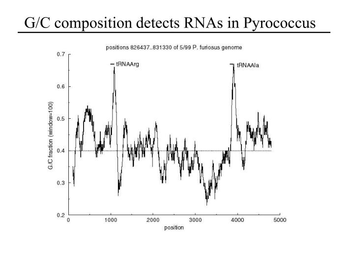 G/C composition detects RNAs in Pyrococcus