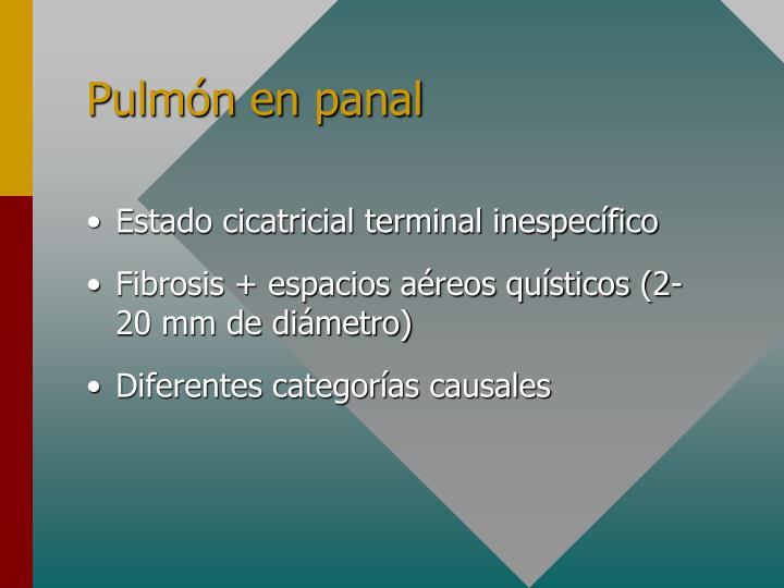Pulmón en panal