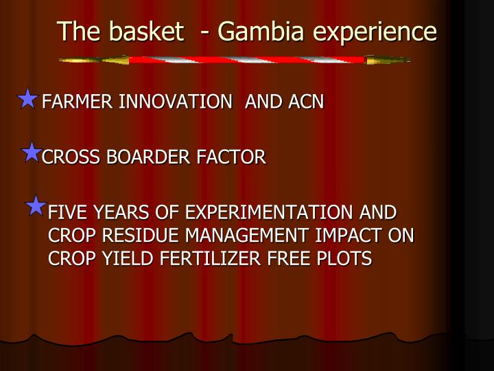 The basket  - Gambia experience