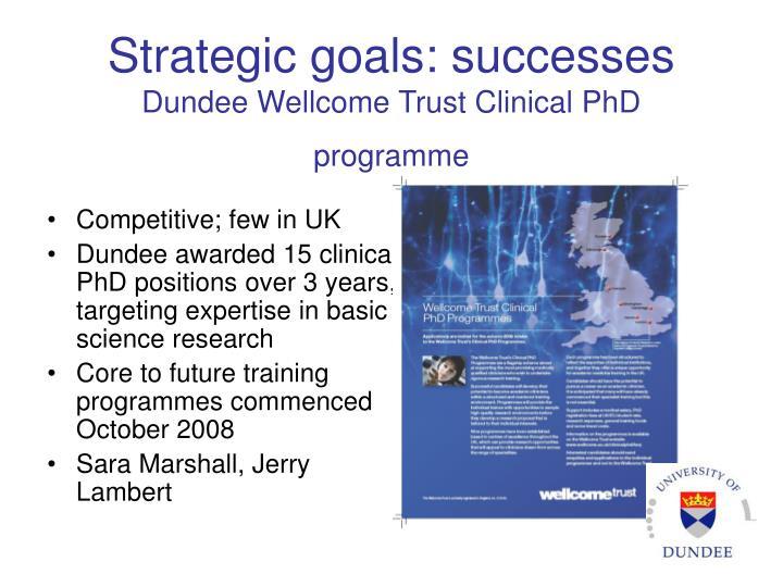 Strategic goals: successes