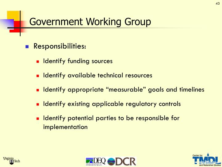 Government Working Group