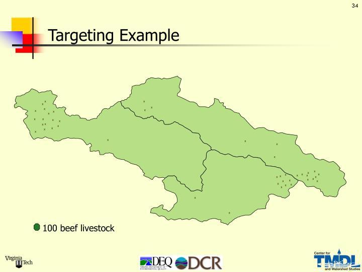 Targeting Example