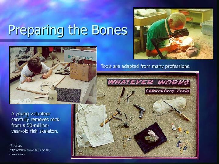 Preparing the Bones