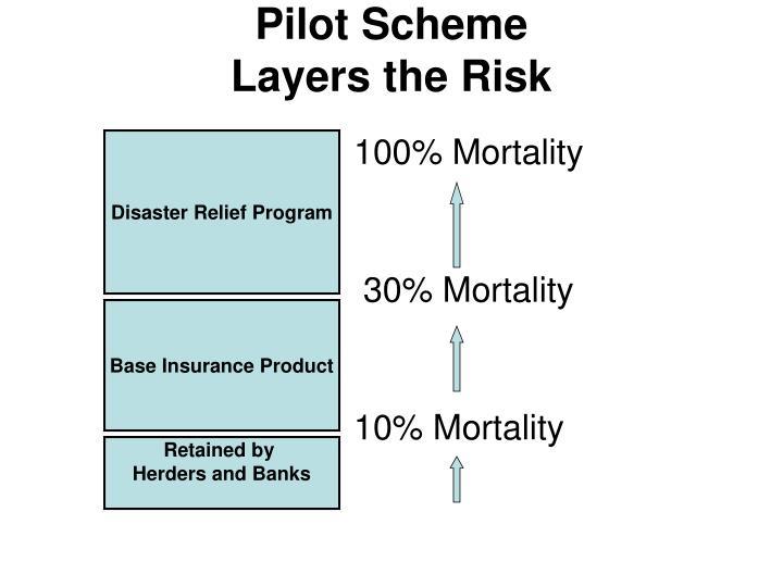 Pilot Scheme