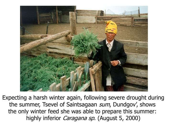 Expecting a harsh winter again, following severe drought during