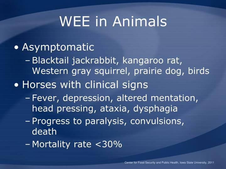 WEE in Animals