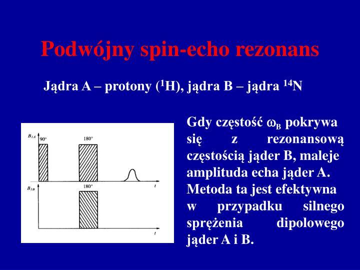 Podwójny spin-echo rezonans