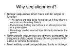 why seq alignment
