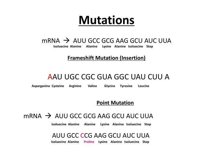 Mutations1