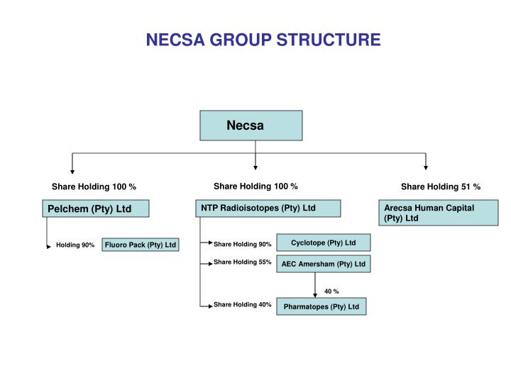 NECSA GROUP STRUCTURE