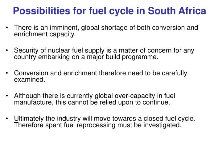 Possibilities for fuel cycle in South Africa