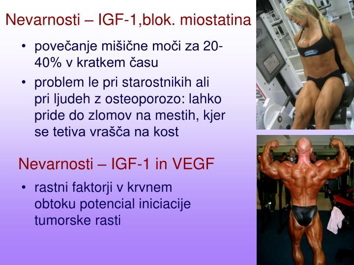 Nevarnosti – IGF-1,blok. miostatina