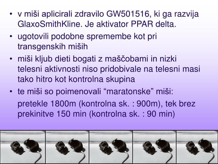 v miši aplicirali zdravilo GW501516, ki ga razvija GlaxoSmithKline. Je aktivator PPAR delta.