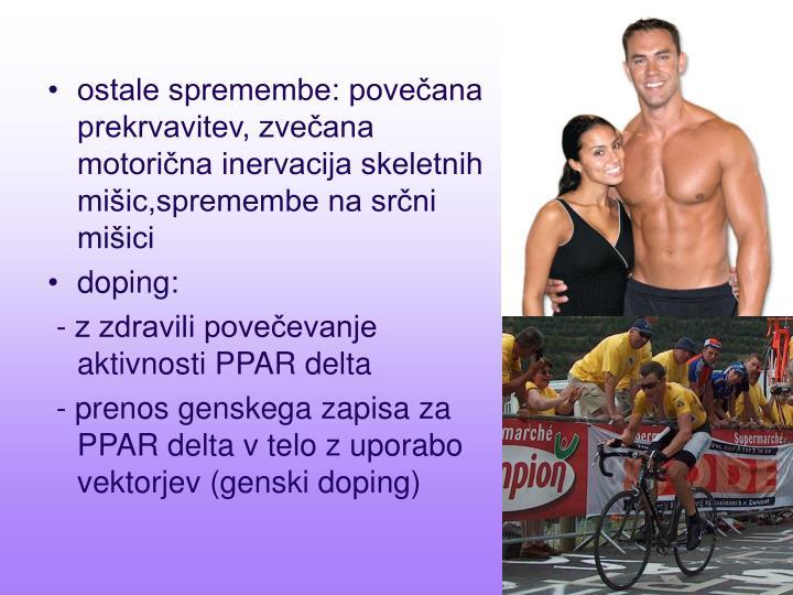 ostale spremembe: povečana prekrvavitev, zvečana motorična inervacija skeletnih mišic,spremembe na srčni mišici