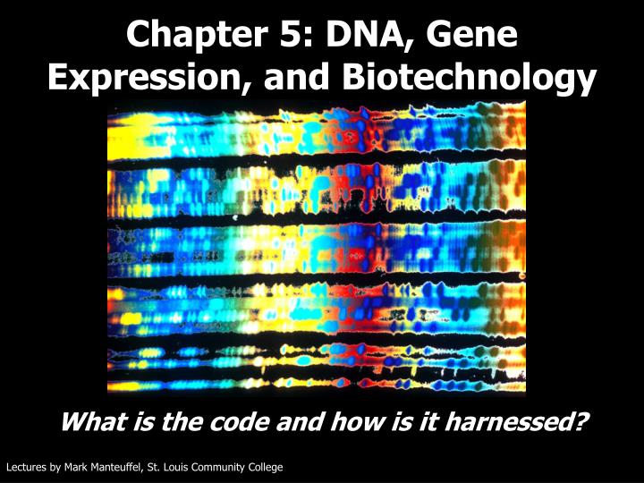 chapter 5 dna gene expression and biotechnology n.