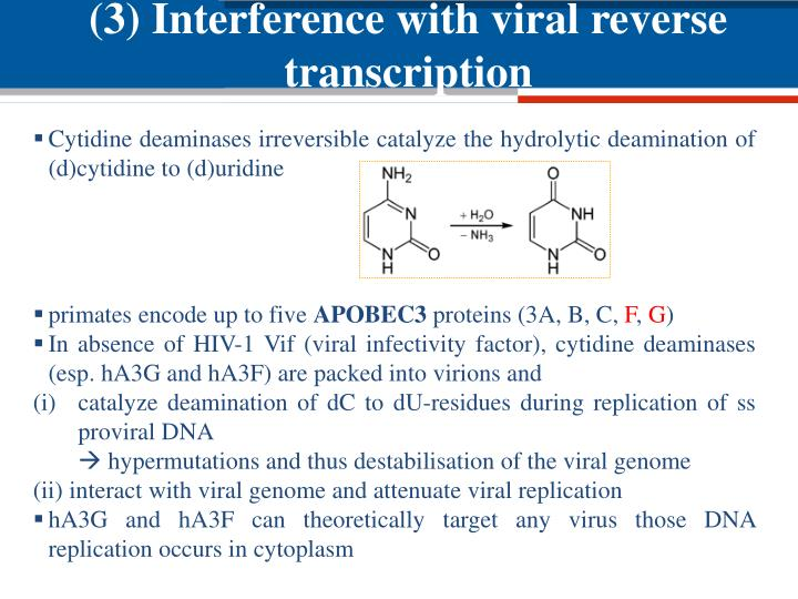 (3) Interference with viral reverse transcription