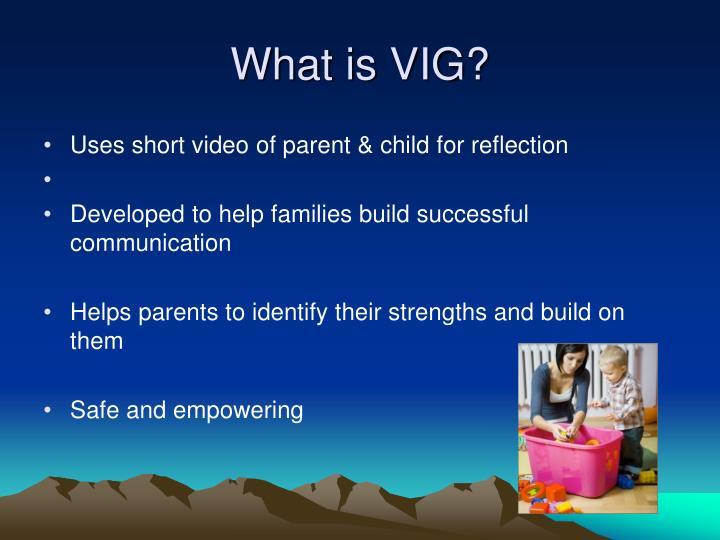 What is VIG?