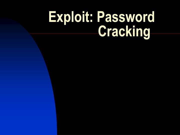 exploit password cracking n.
