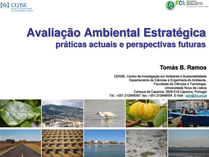 Avalia o ambiental estrat gica pr ticas actuais e perspectivas futuras