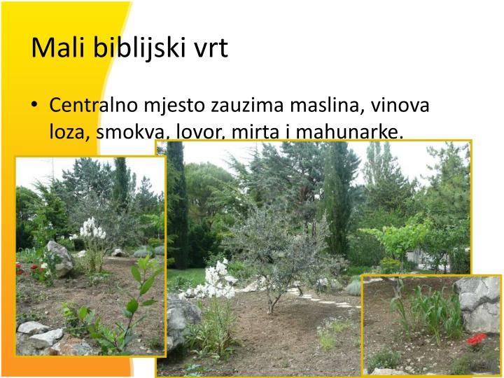 Mali biblijski vrt