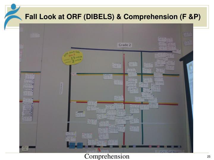 Fall Look at ORF (DIBELS) & Comprehension (F &P)