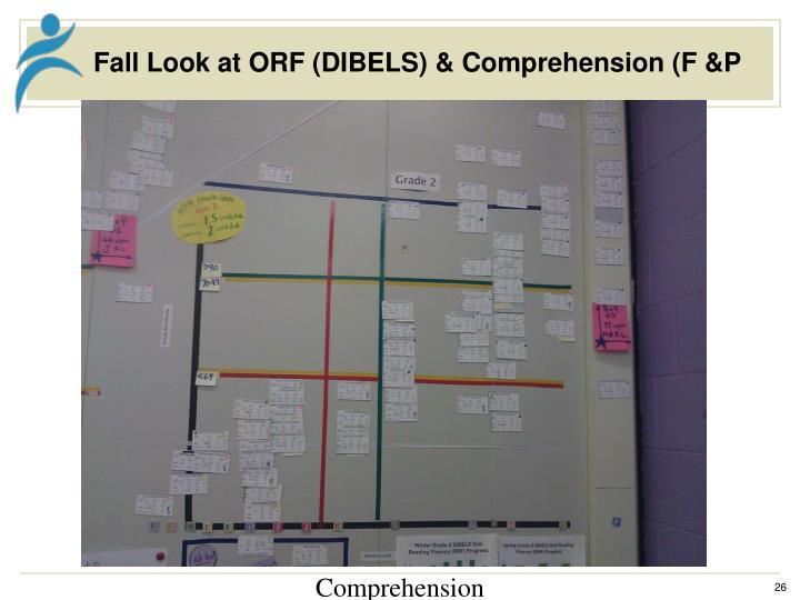 Fall Look at ORF (DIBELS) & Comprehension (F &P