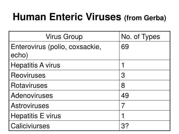Human Enteric Viruses