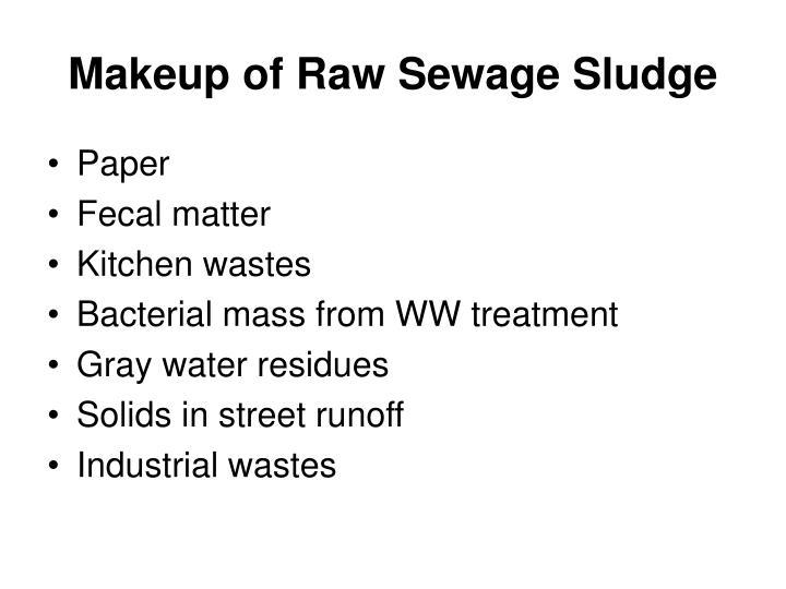 Makeup of Raw Sewage Sludge
