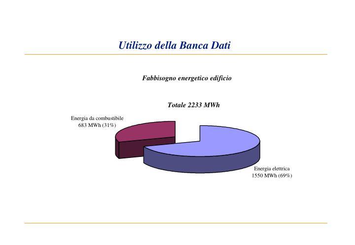 Utilizzo della Banca Dati