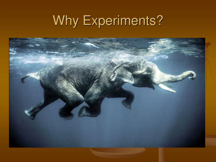 Why experiments