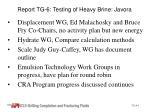 report tg 6 testing of heavy brine javora1
