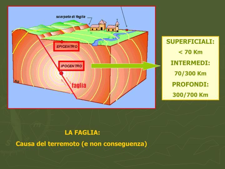 SUPERFICIALI: