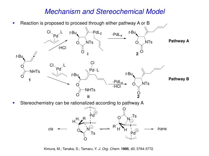 Mechanism and Stereochemical Model