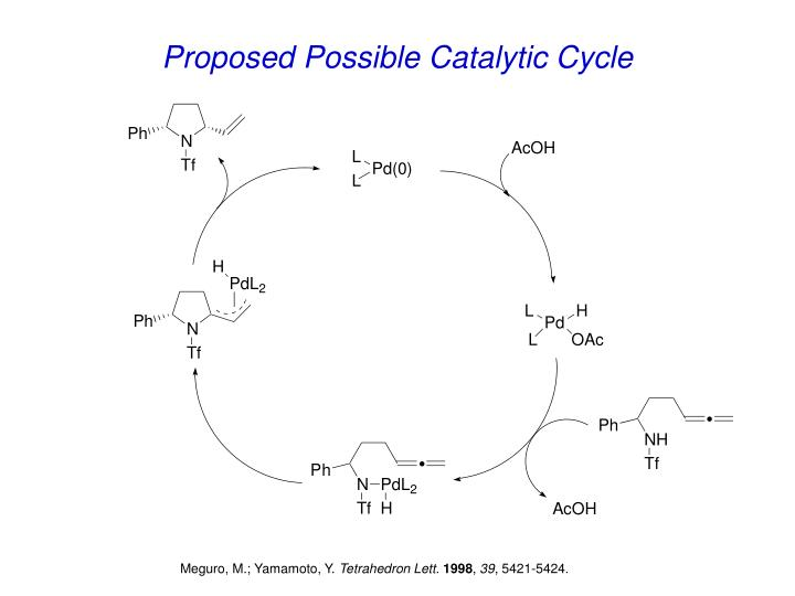 Proposed Possible Catalytic Cycle