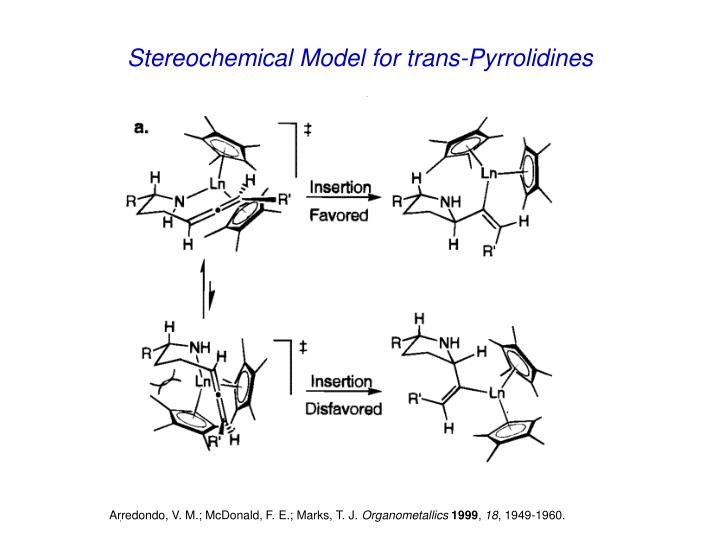Stereochemical Model for trans-Pyrrolidines
