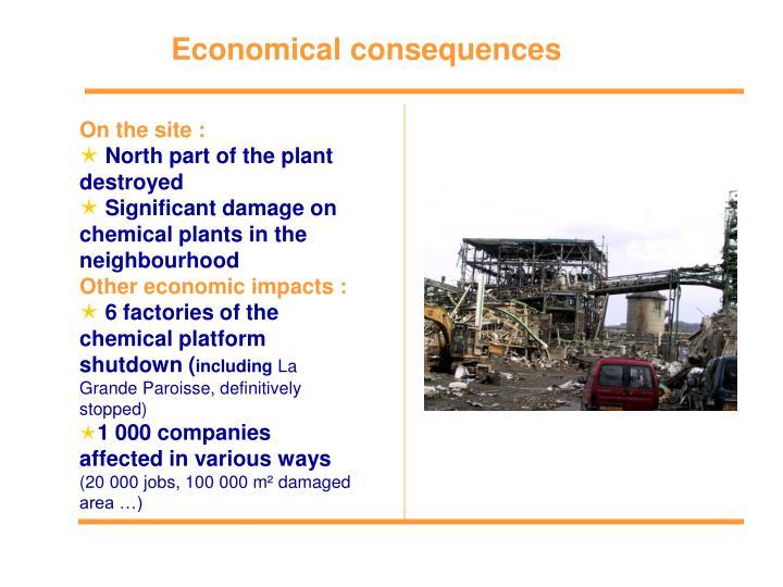 Economical consequences