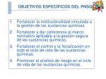 objetivos espec ficos del pnsq